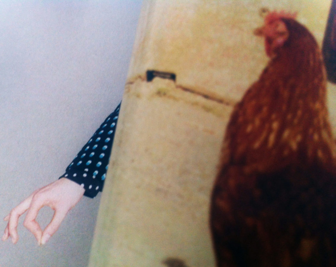 Screen grab of a hand/arm and a chicken